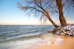 Mar e invierno fotografía de archivo