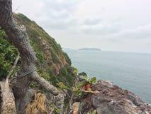 Mar e montanha Fotografia de Stock