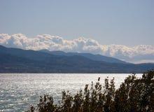 Mar e montanha das árvores foto de stock