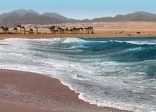 Mar en Egipto, bahía de Nabk Fotos de archivo libres de regalías