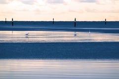 Mar en la salida del sol foto de archivo