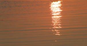 Mar en un fondo de la puesta del sol y una reflexión de rayos en el agua almacen de video