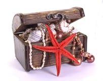 Mar-estrela e caixa Foto de Stock Royalty Free