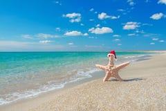 Mar-estrella en el sombrero de santa en la playa arenosa del mar Imágenes de archivo libres de regalías