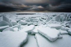Mar gelado Fotografia de Stock