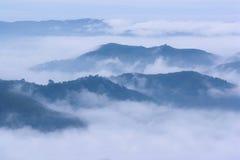 Mar hermoso de la niebla en las montañas superiores Imágenes de archivo libres de regalías