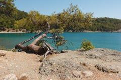 Mar hermoso y costa rocosa. Foto de archivo libre de regalías