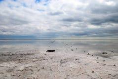 Mar hidroclórico de Azov de los abedules Imagen de archivo libre de regalías