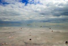 Mar hidroclórico de Azov de los abedules Imagen de archivo