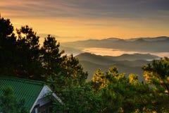 Mar ligero del bosque de la montaña de la niebla Foto de archivo libre de regalías
