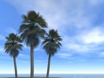 Mar-linha nuvens e palmas ilustração royalty free