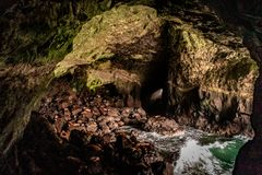 Mar Lion Caves en Florence Oregon en la costa imagen de archivo libre de regalías