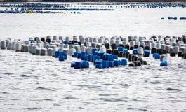 Mar litoral da carreira da pesca Imagem de Stock Royalty Free