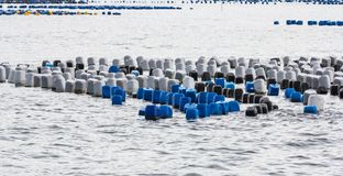 Mar litoral da carreira da pesca Fotos de Stock Royalty Free