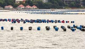 Mar litoral da carreira da pesca Foto de Stock Royalty Free
