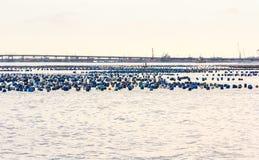 Mar litoral da carreira da pesca Fotografia de Stock