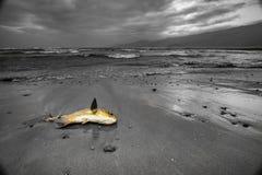 Mar malvado Fotografía de archivo libre de regalías
