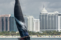 Mar Mostro off Miami Beach Stock Images