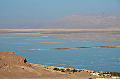 Mar muerto Fotografía de archivo