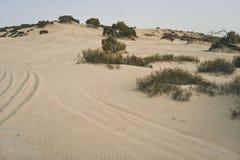 Mar muerto en Israel fotografía de archivo libre de regalías