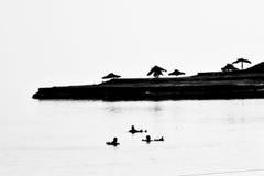 Mar muerto, Israel Fotografía de archivo libre de regalías