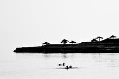 Mar muerto, Israel Imágenes de archivo libres de regalías
