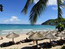 Mar, ondas, palmeira, céu, palma Imagem de Stock Royalty Free