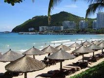 Mar, ondas, palmeira, céu, palma Fotografia de Stock Royalty Free