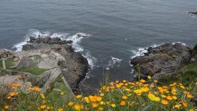Mar ondulado en un aire ventoso metrajes