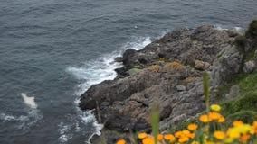 Mar ondulado en un aire ventoso almacen de metraje de vídeo