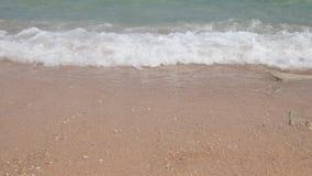 Mar ou oceano da água na praia video estoque