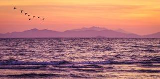 Mar púrpura después de la puesta del sol en la playa fotos de archivo