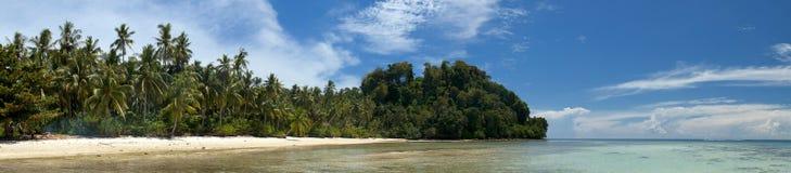Mar polinésio tropical Crystal Water Borneo Indonesia do oceano do Palm Beach do paraíso de turquesa Imagem de Stock