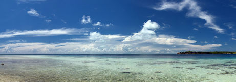 Mar polinésio tropical Crystal Water Borneo Indonesia do oceano do Palm Beach do paraíso de turquesa Foto de Stock