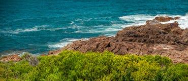 Mar, rocha, planta Foto de Stock