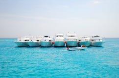 Mar Rojo en Egipto fotos de archivo libres de regalías