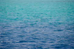 Mar Rojo, fondo, agua azul limpia fotografía de archivo libre de regalías