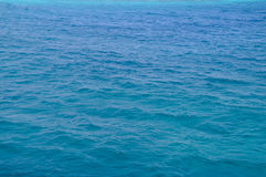 Mar Rojo, fondo, agua azul limpia imágenes de archivo libres de regalías