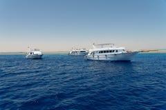 Mar Rosso Fotografie Stock Libere da Diritti