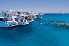 Mar Rosso, Egitto Immagini Stock