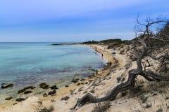 Mar salvaje Fotografía de archivo