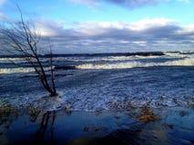 Mar salvaje Fotografía de archivo libre de regalías
