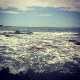 Mar selvagem Fotografia de Stock