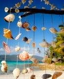 Mar Shell Chime Overlooking uma lagoa tropical imagem de stock