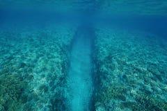 Mar subaquático da trincheira natural no recife de corais Foto de Stock Royalty Free