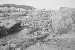 Mar, tormenta, persona Foto de archivo