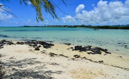 Mar tropical idílico en día soleado Foto de archivo libre de regalías