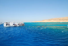 Mar Vermelho de Egipto Fotos de Stock Royalty Free