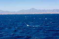Mar Vermelho perto de Hurghada, bonito fotografia de stock royalty free