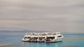 Mar Vermelho Sharm el Sheikh Egypt Foto de Stock